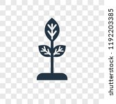 seed vector icon isolated on... | Shutterstock .eps vector #1192203385
