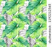 hand drawn watercolor seamless... | Shutterstock . vector #1192212565