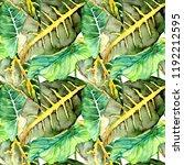 hand drawn watercolor seamless... | Shutterstock . vector #1192212595