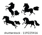 four black horse on a white...