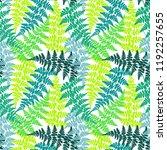 fern frond herbs  tropical... | Shutterstock .eps vector #1192257655