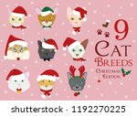 set of 9 cat breeds with... | Shutterstock .eps vector #1192270225