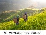 Hmong Ethnic Minority Women In...