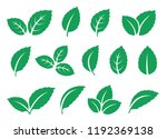 blue mint leaves set icons on... | Shutterstock .eps vector #1192369138