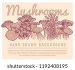 hand drawn mushrooms background....   Shutterstock .eps vector #1192408195