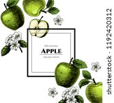 vector frame with apples. hand... | Shutterstock .eps vector #1192420312