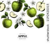 vector frame with apples. hand... | Shutterstock .eps vector #1192420315