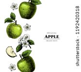 vector frame with apples. hand... | Shutterstock .eps vector #1192420318