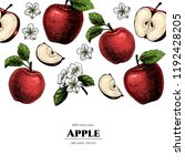 vector frame with apples. hand... | Shutterstock .eps vector #1192428205