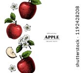 vector frame with apples. hand... | Shutterstock .eps vector #1192428208