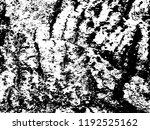 grunge texture   abstract stock ... | Shutterstock .eps vector #1192525162