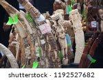 new york city  new york   usa   ... | Shutterstock . vector #1192527682