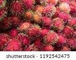 sweet fruits rambutan delicious ...   Shutterstock . vector #1192542475