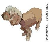 illustration of shaggy dog.... | Shutterstock .eps vector #1192614832