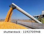 combine harvester unloading...