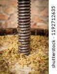 grape harvest  wine press with... | Shutterstock . vector #1192712635