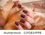girl with brown manicure on... | Shutterstock . vector #1192814998