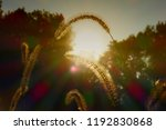 sunrays with chromatic... | Shutterstock . vector #1192830868