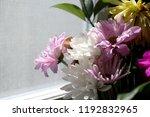 floral close up desktop screen... | Shutterstock . vector #1192832965