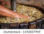 farmer's hand move white must... | Shutterstock . vector #1192837945