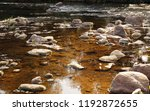 clean natural river. fast... | Shutterstock . vector #1192872655