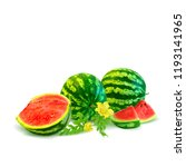 fresh  nutritious and tasty... | Shutterstock .eps vector #1193141965