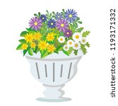potted flowers  african daisy... | Shutterstock .eps vector #1193171332