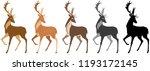 Set Of Deer. Deer  Spotted Deer ...