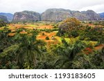 high view of the vi ales valley ... | Shutterstock . vector #1193183605