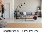 pouf on carpet in spacious flat ... | Shutterstock . vector #1193191792