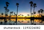 beautiful sunset reflection of... | Shutterstock . vector #1193226082