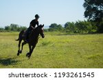 horse and jockey outdoor  | Shutterstock . vector #1193261545