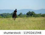 horse and jockey outdoor  | Shutterstock . vector #1193261548