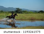 horse and jockey outdoor  | Shutterstock . vector #1193261575