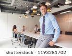 portrait of businessman... | Shutterstock . vector #1193281702