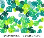 sea green philodendron or... | Shutterstock .eps vector #1193587198