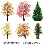 vector deciduous and coniferous ... | Shutterstock .eps vector #1193623912