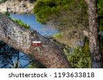 signal of the gr2 long distance ... | Shutterstock . vector #1193633818