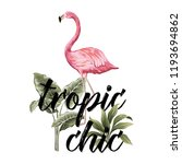 pink flamingo  tropical plants... | Shutterstock .eps vector #1193694862