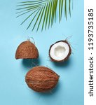 composition from coconut and... | Shutterstock . vector #1193735185