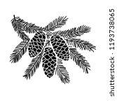 hand drawn spruce tree branch... | Shutterstock .eps vector #1193738065