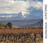 Small photo of Volcano Aconcagua and Vineyard. Aconcagua is the highest mountain in the Americas at 6,962 m (22,841 ft). It is located in the Andes mountain range, in the Argentine province of Mendoza