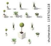 vector isometric office plants. ...   Shutterstock .eps vector #1193761618