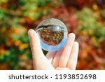 Crystal Lens Ball In Hand With...