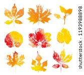 autumn watercolor leaves...   Shutterstock . vector #1193988898