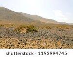 pebbles shingles stones... | Shutterstock . vector #1193994745