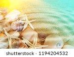 Seashells And Sea Starfishes O...