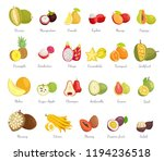 sugar apple and guava set...   Shutterstock .eps vector #1194236518