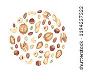 nut mix in the form of a circle.... | Shutterstock .eps vector #1194237322