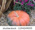 An Orange And Green Pumpkin...